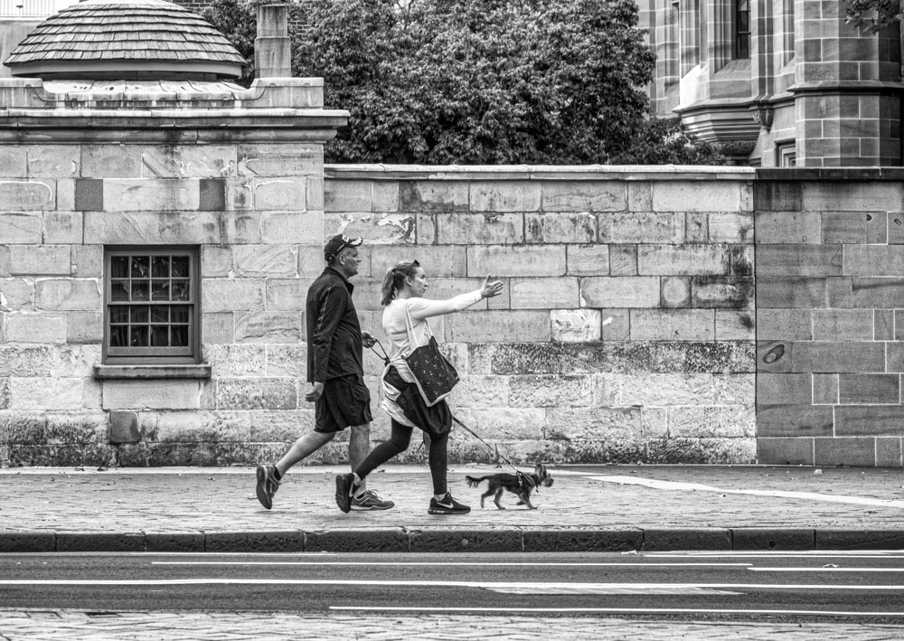 Dogwalkers on Macquarie St